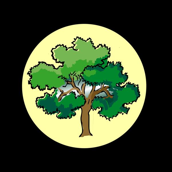 Brown Tree Branch Clip art