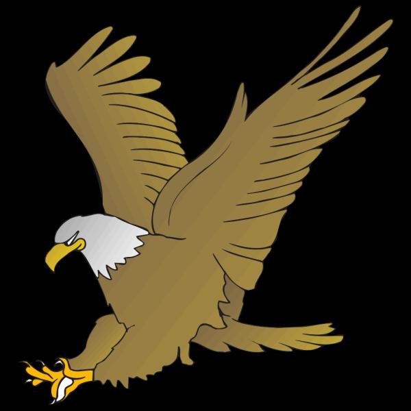 Hunting Eagle PNG Clip art