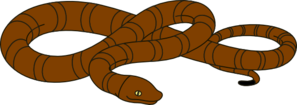 Snake PNG icons
