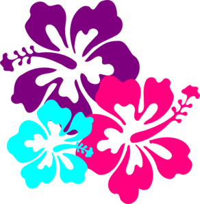 Hibiscus Flowers PNG icons