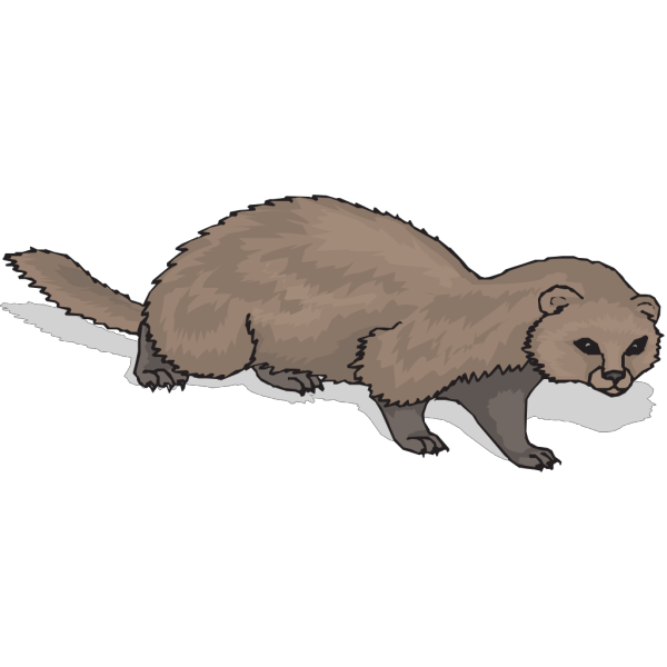 Ferret With Shadow PNG Clip art