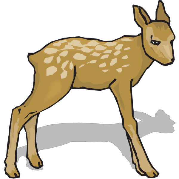 Suspicious Fawn PNG images