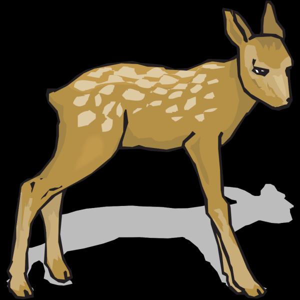 Suspicious Fawn PNG Clip art