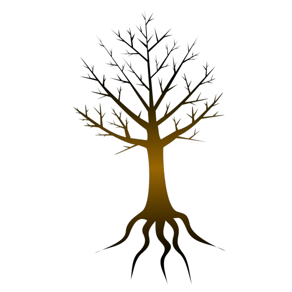 Tree Trunk PNG Clip art