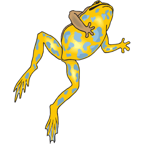 Yellow And Blue Frog PNG Clip art