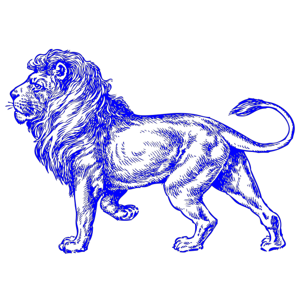 Lion PNG icons