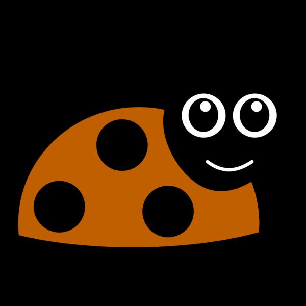 Brown Ladybug PNG images