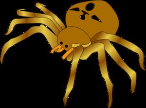 Brown Spider PNG Clip art