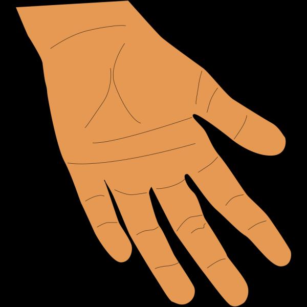 Hand - Brown PNG Clip art