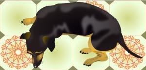 Dog Resting On Tiles PNG Clip art