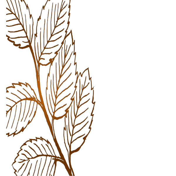 Leaves PNG icon