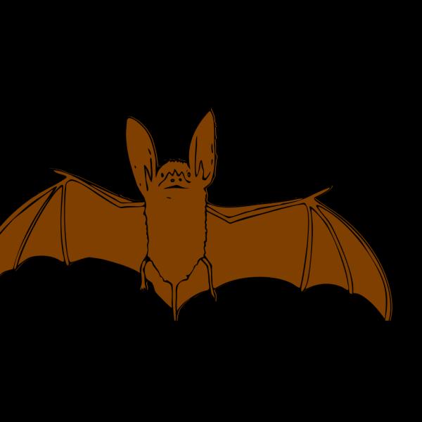 Brown Bat PNG Clip art