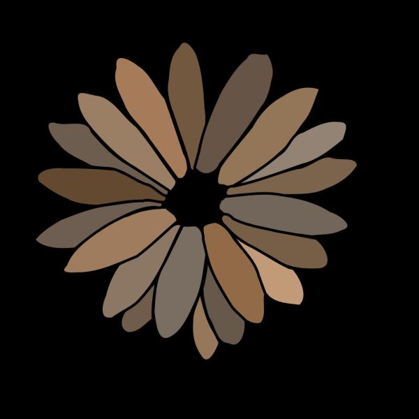 Gray Brown Daisy