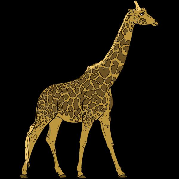 Walking Giraffe PNG Clip art