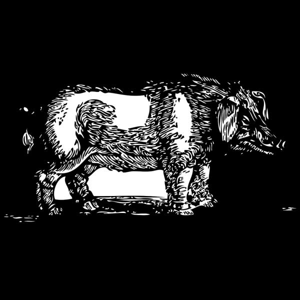 Hog In Slop PNG Clip art