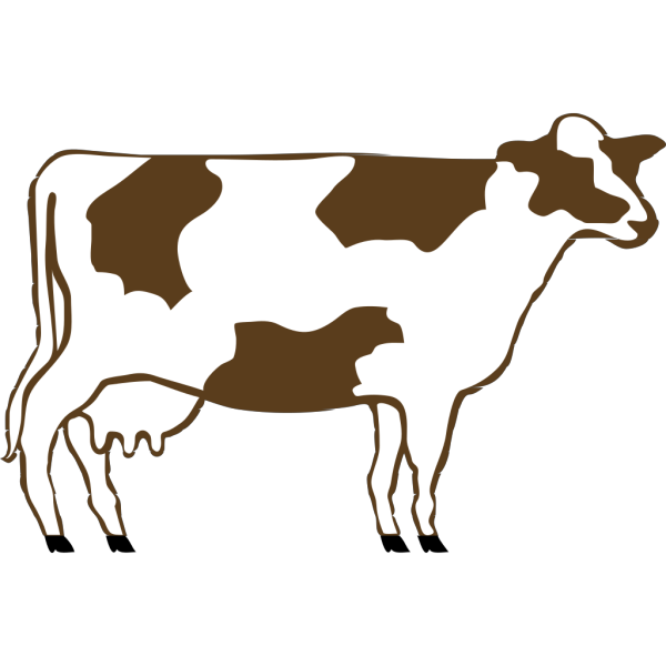 White And Brown Cow PNG Clip art