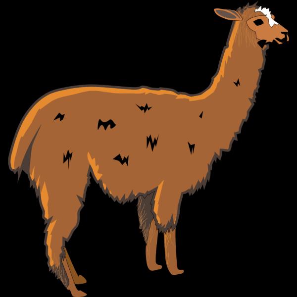 Shaggy Brown Llama PNG Clip art