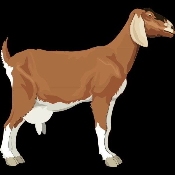 Brown Goat PNG Clip art