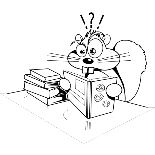 Confused Squirrel PNG Clip art