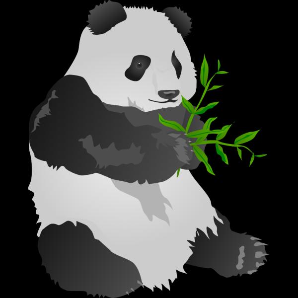 Panda Bear PNG Clip art