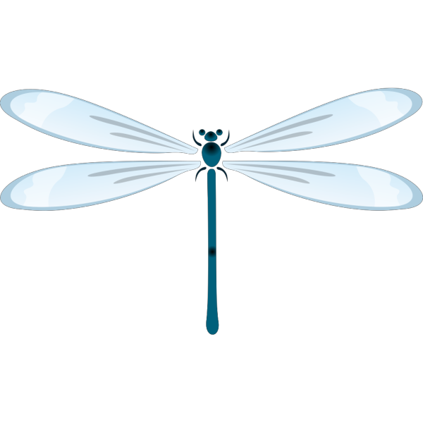 Dragon Fly PNG Clip art