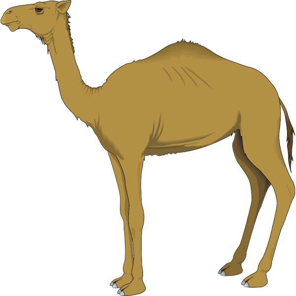 Brown Standing Camel PNG icons