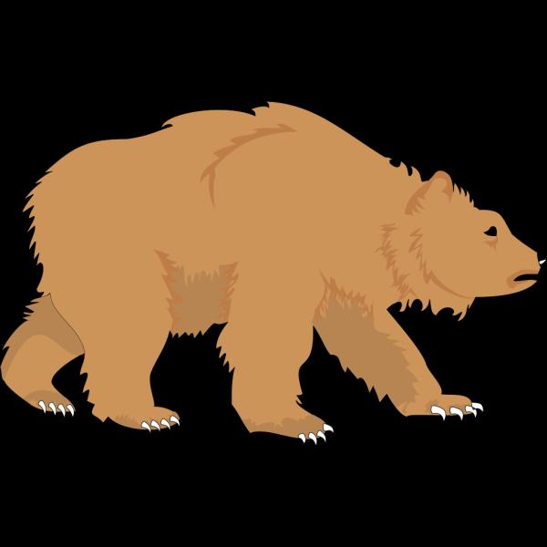 Fluffy Brown Bear PNG Clip art