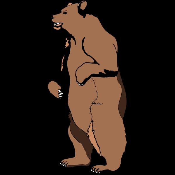 Standing Brown Bear PNG Clip art