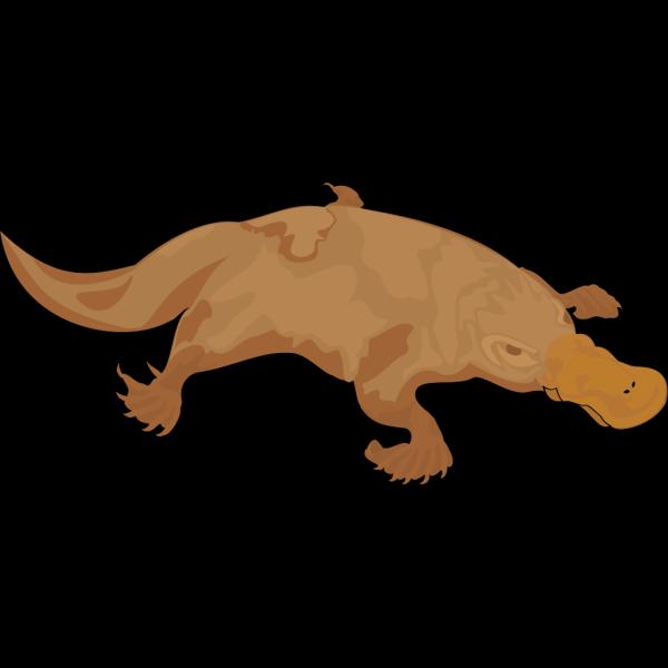 Brown Platypus PNG Clip art