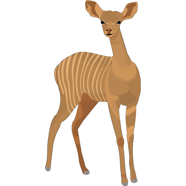 Curious Animal PNG images