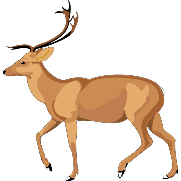 Walking Animal Side View PNG Clip art