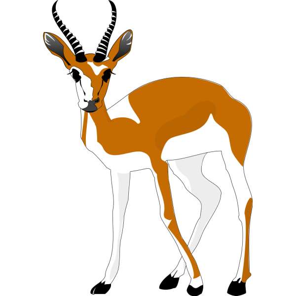 Staring Antelope PNG Clip art