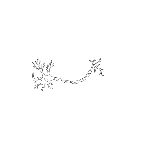 Neuron - Black And White PNG images
