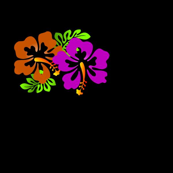 Hibiscus Flower PNG Clip art