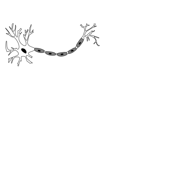 Neuron B&w PNG images