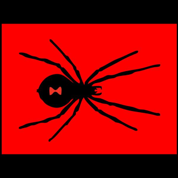 Red Black Widow PNG Clip art