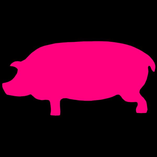 Pig Pink PNG Clip art