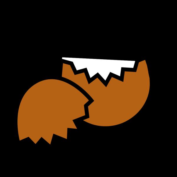 Brown Egg Shell