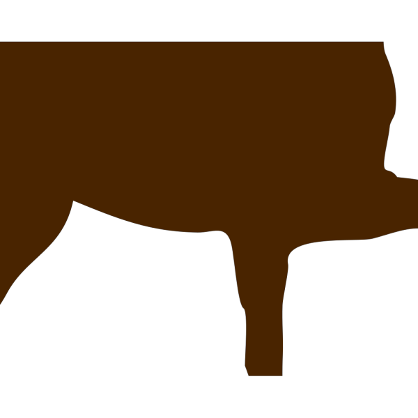 Brown Horse PNG Clip art