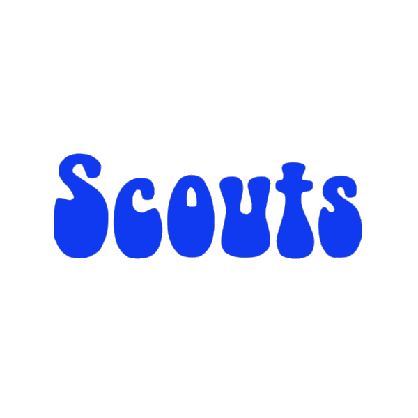 Scouts PNG icons