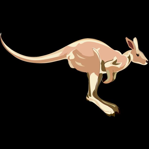 Jumping Kangaroo PNG Clip art