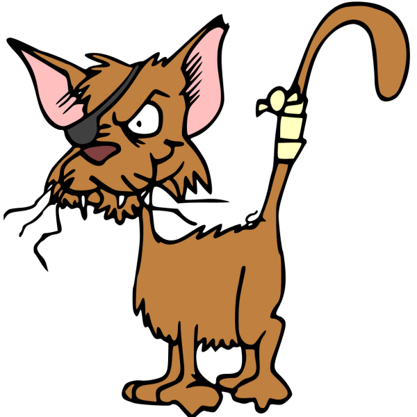 Fighting Cat In Color PNG images