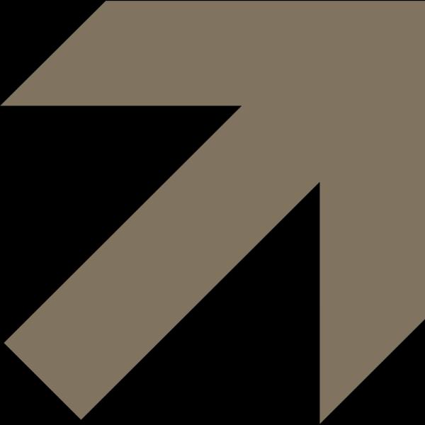 Brown Arrow PNG Clip art