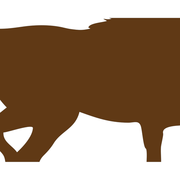 Brown Horse Sillouette PNG Clip art