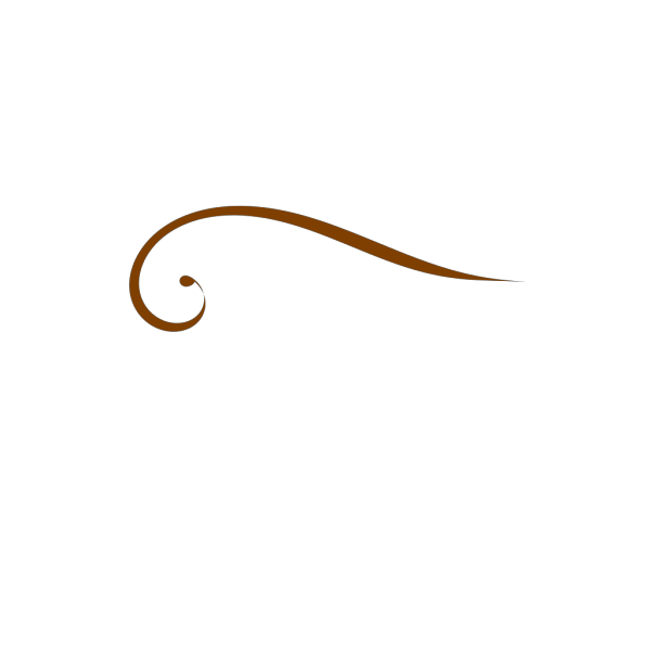 Brown Swirl PNG Clip art