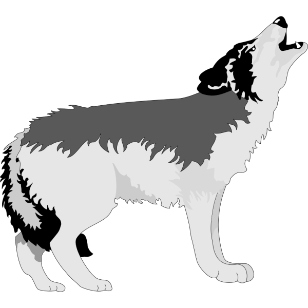 Howling Black And Gray Wolf PNG Clip art