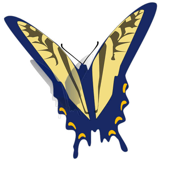 Blue And Gray Butterfly PNG Clip art