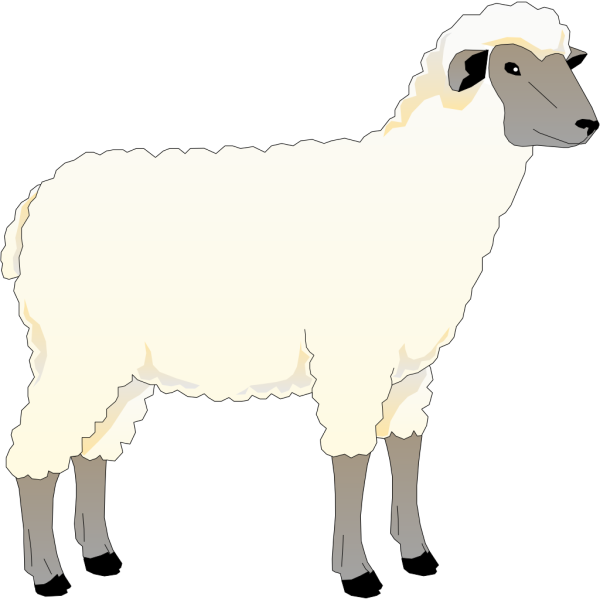 Wooly Sheep PNG Clip art