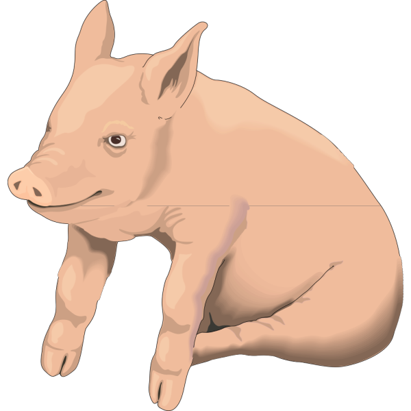 Sitting Pig PNG Clip art