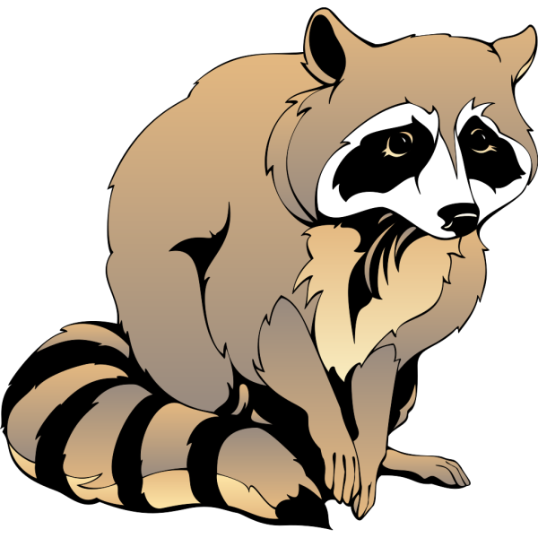 Sitting Racoon PNG Clip art